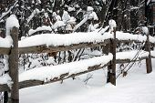 picture of split rail fence  - Freshly fallen snow on old split rail fence in the country - JPG