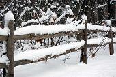 foto of split rail fence  - Freshly fallen snow on old split rail fence in the country - JPG