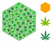Filled Hexagon Collage Of Weed Leaves In Different Sizes And Green Tones. Vector Flat Weed Objects A poster