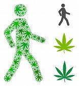 Walking Man Collage Of Weed Leaves In Variable Sizes And Green Tones. Vector Flat Weed Items Are Com poster