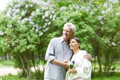 Cheerful and affectionate aged couple enjoying their walk in blooming park among trees poster