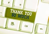 Word Writing Text Thank You So Much. Business Concept For Expression Of Gratitude Greetings Of Appre poster