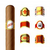Cigar labels. Vector.
