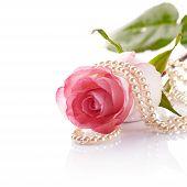 image of beads  - Pink rose - JPG