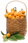 stock photo of loquat  - Loquat fruit in basket isolated on a white background - JPG