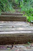 foto of rainy season  - Stairs In The Rainy Season Green Forest