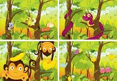 stock photo of jungle snake  - four scenes of the jungle - JPG