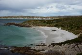 picture of falklands  - Curved sandy beach of Gypsy Cove in the Falkland Islands - JPG