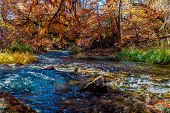 stock photo of guadalupe  - Beautiful Fall Foliage Surrounding the Rolling Guadalupe River Texas - JPG