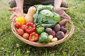 image of farmer  - Farmer carrying basket of veg on a sunny day - JPG