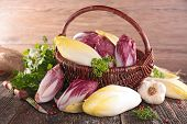 stock photo of chicory  - basket with raw chicory - JPG