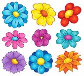 stock photo of six-petaled  - Flower theme collection 6  - JPG
