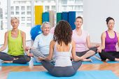 stock photo of senior class  - Group of people practicing lotus position in yoga class - JPG