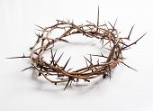 stock photo of jesus  - Crown of thorns on a white background Easter religious motif commemorating the resurrection of Jesus - JPG