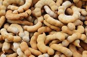 picture of tamarind  - fruit tamarind on a table in the market - JPG