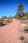 image of dirt road  - Long Straight Dirt Desert Road disappears into the Horizon in Gran Canaria Spain - JPG
