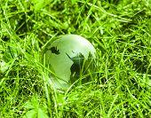 stock photo of continent  - World environmental concept - JPG