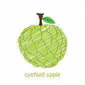 stock photo of custard  - creative custard apple fruit - JPG