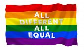 picture of gay flag  - Gay rainbow equality flag - JPG