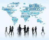 foto of nature conservation  - Natural Resources Environmental Conservation Sustainability Concept - JPG