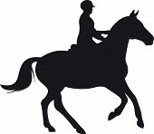 stock photo of horse-riders  - horse silhouette isolated on white background - JPG