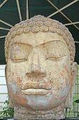 Постер, плакат: Камень Скульптура Голова Будды