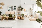Posters Above Green Sofa With Pillows In White Living Room Interior With Plants And Table. Real Phot poster