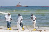 PERDIDO KEY, FL - JUNE 10: Oil spill workers collect tainted debris and dark oil patches along the b