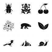 Flora Icons Set. Simple Illustration Of 9 Flora Icons For Web poster