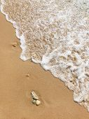 Wave Of Sea On A Sand Beach. The Wave Washes The Golden Sand Of The Beach. White Foamy Waves Of The  poster