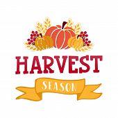 Harvest Lettering Card poster