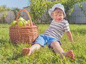 Harvesting Concept. Apples In Basket. Basket Full Of Fruits. Rustic Lifestyle. poster