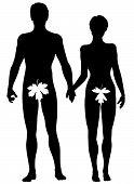 stock photo of adam eve  - Editable vector silhouette of Adam and Eve - JPG