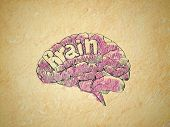 picture of retarded  - watercolor brain and mind - JPG