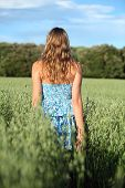 Back View Of A Woman Walking Across An Oat Meadow
