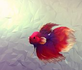 stock photo of siamese fighting fish  - Fight fish in water 3d render computer graphic illustration in mosaic flat surface style - JPG