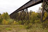 picture of trestle bridge  - A steel railroad bridge in the woods - JPG