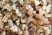 picture of embalming  - Frankincense  - JPG