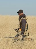stock photo of shotguns  - A hunter in tall grass hunting pheasants - JPG