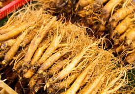 picture of ginseng  - Ginseng root stick - JPG