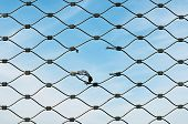 stock photo of gash  - blue sky behind wire mesh ripped open - JPG