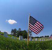 picture of veterans  - veterans cemetery memorial celebration with American Flag - JPG