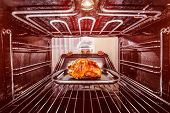picture of oven  - Chef prepares roast chicken in the oven - JPG