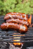 image of grilled sausage  - Grilling sausages on barbecue grill - JPG