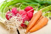 image of root vegetables  - raw root vegetable on a rustic white wood table - JPG