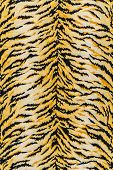 stock photo of tigers  - texture of print fabric stripes tiger for background - JPG