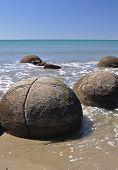 picture of maori  - Moeraki Boulders are perfectly sperical rocks on the beach at Moeraki north of Dunedin near Oamaru - JPG