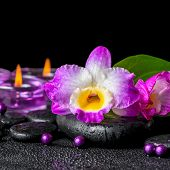 picture of calla  - spa background of purple orchid dendrobium green leaf Calla lily and candles on black zen stones with drops closeup - JPG