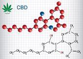 Cannabidiol (cbd) - Structural Chemical Formula And Molecule Model. Active Cannabinoid In Cannabis,  poster