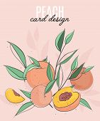 Vector Template With Peaches, Leaves And Text. Vegetarian Fruit Brochure Flyer, Booklet Leaflet With poster